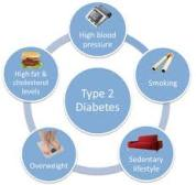 Read about the Causes of Diabetes