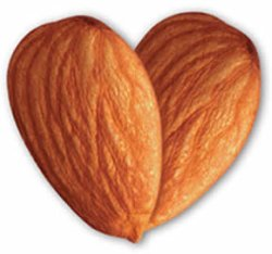Buy organic almonds from Goodness Direct