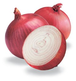 quercitin in onion skin