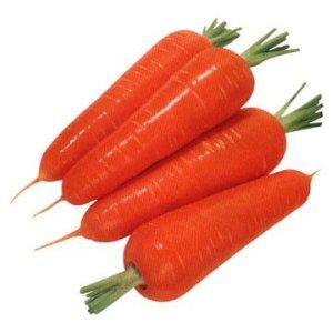 carrots are rich in fibre and beta carotene