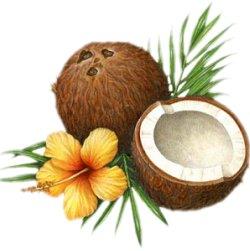 health bebnefits of coconut