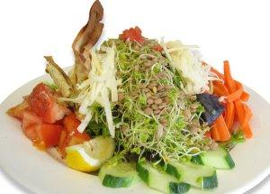 alfalfa sprout salad
