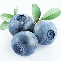blueberries for bladder infections