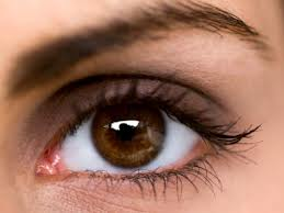 benefits of blueberries on the eyes