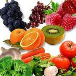 great variety of fruits and vegetables