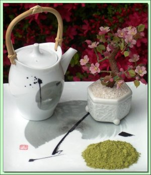 green tea in Japanese tea pot
