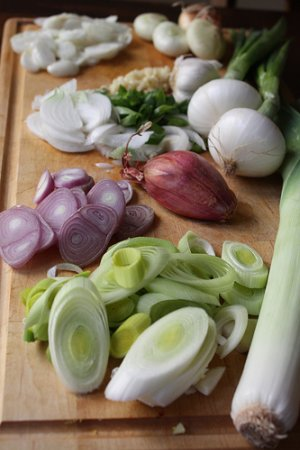 garlic, onions and leeks for diarrhea
