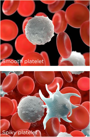 platelets sticking together