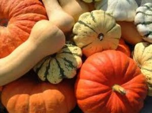 All types of winter squashes are excellent foods for constipation