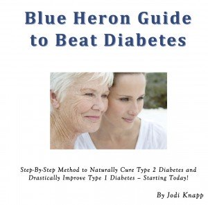 Read more about the Blue Heron Guide to Beat Diabetes
