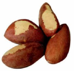 buy organic Brazil nuts from Goodness Direct