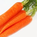 carrots in the treatment of diarrhea
