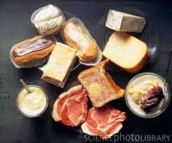 saturated fats are found in meat and dairy products